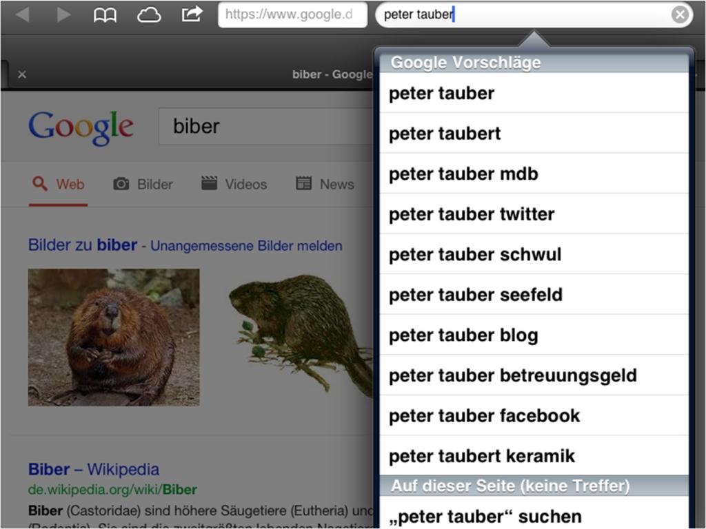 tauber_google